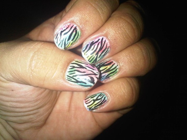 Rainbow Zebra ( Inspired by Robin Moses)