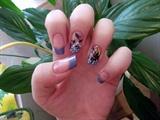 Fairy & Flowers