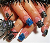 black n blue zebra print
