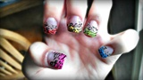 Leopard Zebra Rainbow Mix