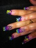 party zebra