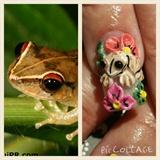 3d Coqui (frog)