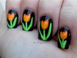 Tri Polish Tulips