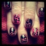 Pink on Black Flowers