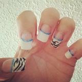 zebra/blue/white tips