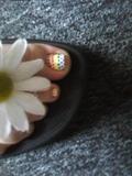 polka-dot rainbow