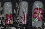Hand Painted Flower Series