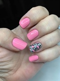 Pink # 4