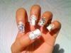 My Zebra Acrylic Nails 2011
