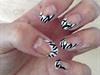 Zebra Nails.