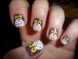 Owls :D