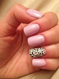 Pink Sky Leopard