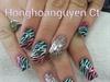 neon zebra and glitter