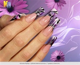 Nail Art (1 level of complexity)