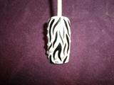 black&white zebra