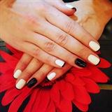 Gel polish -white and black French