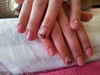 Shellac pink with ribbon