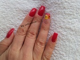 Shellac red with dry flowers