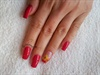 Red shellac with dry flowers
