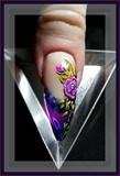 Rose in violet