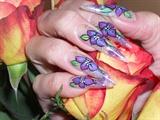 purple onestroke flowers