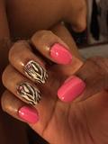 My Pink Zebras
