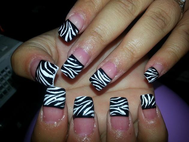 Traditional Zebra