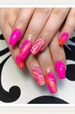 Pink Tropic