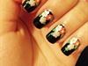 Floral Over Black