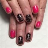Hot Pink W/ Black Lace