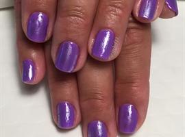 Lilac Dreams
