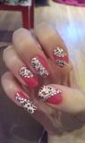 Leopard & Sparkles