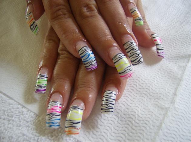 funky zebra