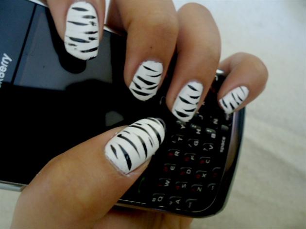 Zebra;