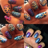 Leopard Foils And Gels❤️