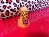 Ombré Leopard