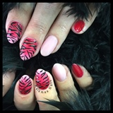 Zebra Nails Ombre Gelpolish