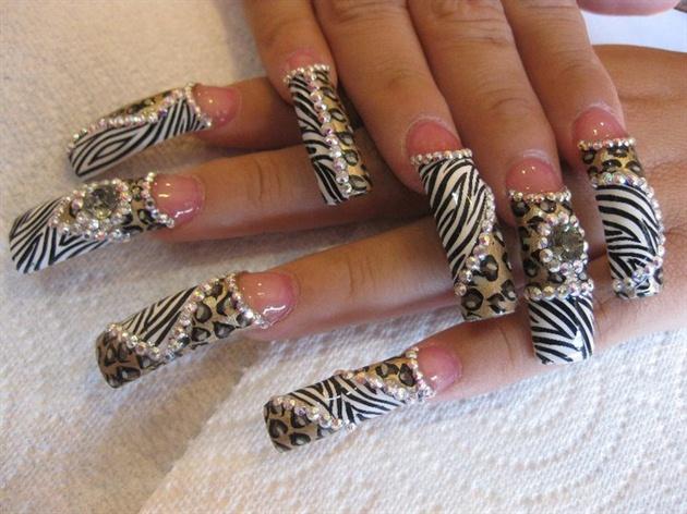 zebra and cheetha