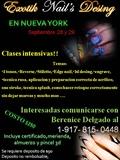 seminar in bronx NY