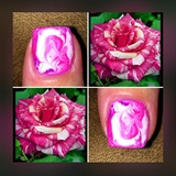 Pretty Like A Rose