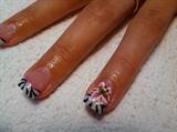 Zebra lily