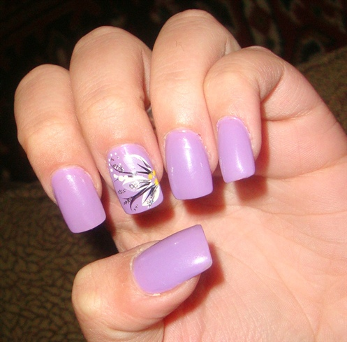 Lavender Fl