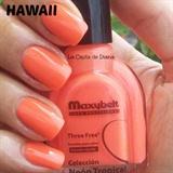 Hawaii Maxybelt