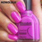 Honolulu Maxybelt
