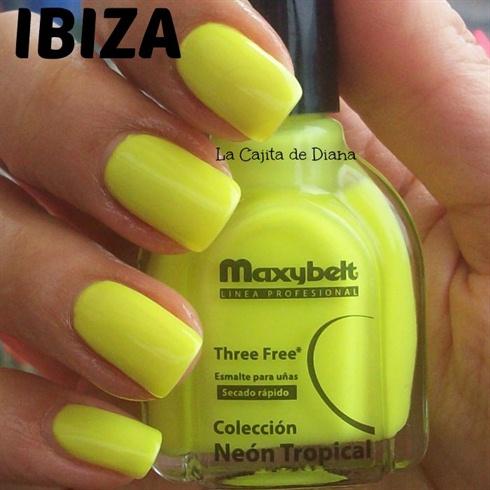 Ibiza Maxybelt