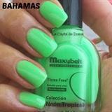 Bahamas Maxybelt