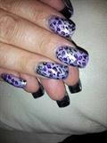 purple cheetah