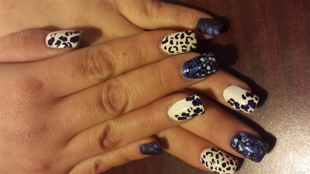 Black and blue leopard and cheetah