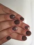 Chestnut Brown With Spiral