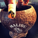 Tropical Malibu